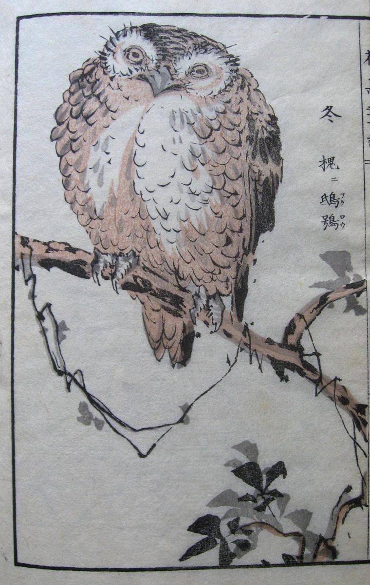 花鳥画譜 Kachô gafu [Recueil d'images d'oiseaux et de fleurs]
